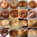 puppy-or-bagel-results